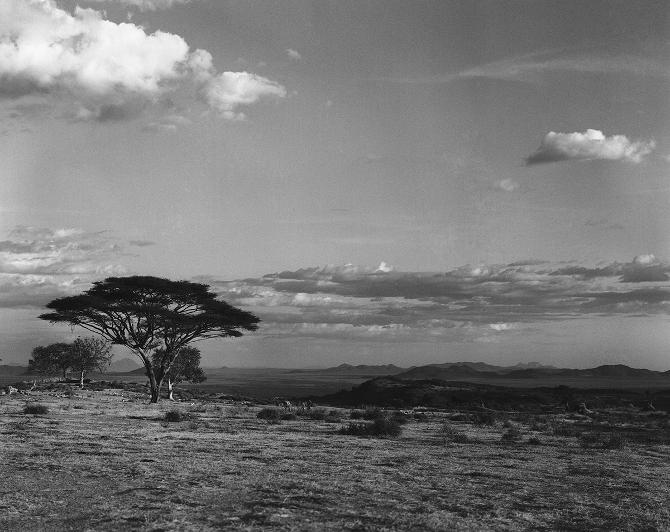 Landascape in North Kenya (1972)